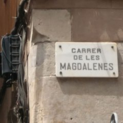 spotted-magdalenes